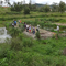 Permaculture at Ecovillage site