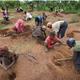 Projet de Permaculture Communautaire en Milieu Rural - Benin