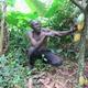 Cocoa Rehabilitation