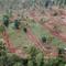 Nurzai, Fruit and Spice Farm