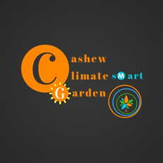 Cashew Gardens Climate Smart Greenhouse