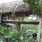 Ixchel Ha Farm Residency