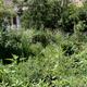 Nomad Gardens #1