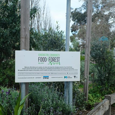 Kensington Community Food Forest