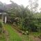 Citrus Grove Cottage