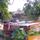 Revitalização Conga's Home