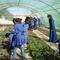 Jawaseri School Garden Project