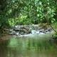Pachamama Forest Garden