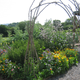 Occombe Farm Forest Garden