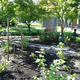 Student Permaculture Garden on PSU Campus