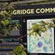 Spring Ridge Commons