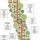 Rahma Clinic Edible Forest Snack Garden