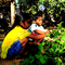 Heal The Soil CSA - India