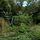 The Orlando Center for Urban Permaculture