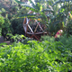 Urban Permaculture House