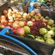 Fair Harvest