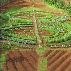 Voluntourism: Conscious Permaculture