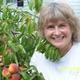 Rebecca (Becky) Wilson - Garden Manager 2015 season