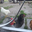 Chickenshouse 039